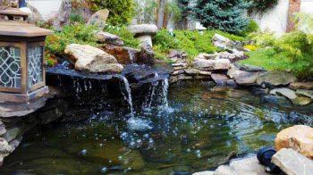 fountain in the yard