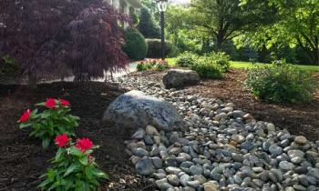 landscaping water flow